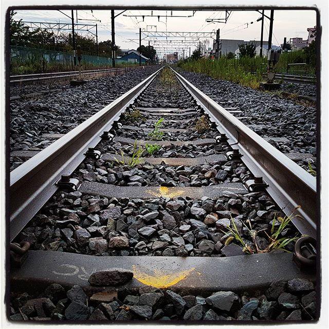 線路は続くよどこまでも #galaxys7 #railroad