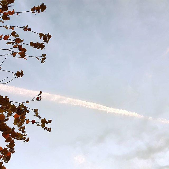 飛行機雲 #galaxys7 #contrail