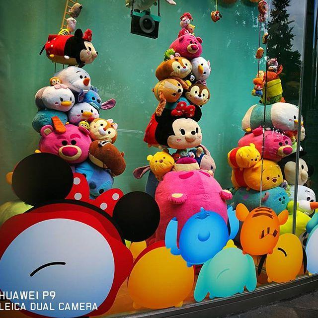 Huawei P9 フィルムモード『鮮明な色』で撮影、Instagramアプリでのフィルターは無し #huawei #huaweip9 #p9 #shopwindow #storewindow
